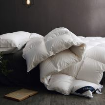 Organic Comforter - Globon Fusion Goose Down Comforter