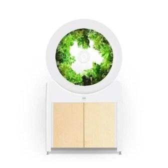 Indoor Garden - OGarden Smart White