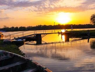 Peisaj din Delta Dunării. FOTO Adrian Boioglu
