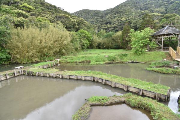 大島紬泥染公園