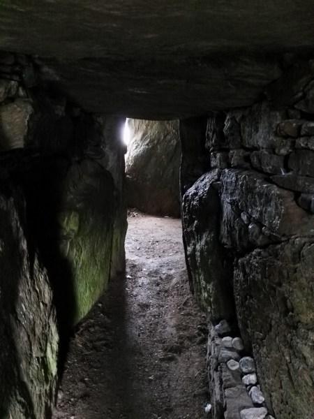 El túmulo del bosque oscuro