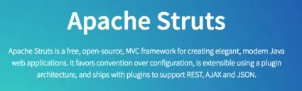 Apache Struts Project Description