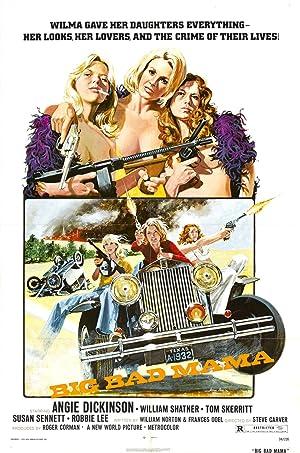AS GOLPISTAS – FILME – 1974