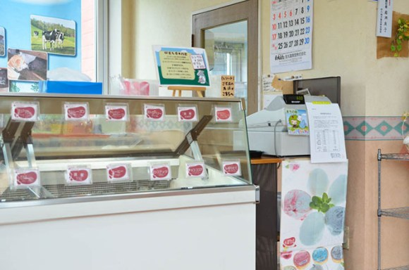 Fresh Milk Gelato and Strawberry Millefeuille Gelato -Iwase Ranch in Sunagawa-
