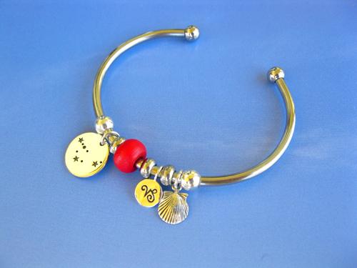 Steel charm bracelet Capricorn