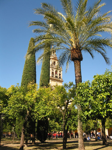 El Jardin de Alcazar is in Cordoba - an inspiring city in Andalucia