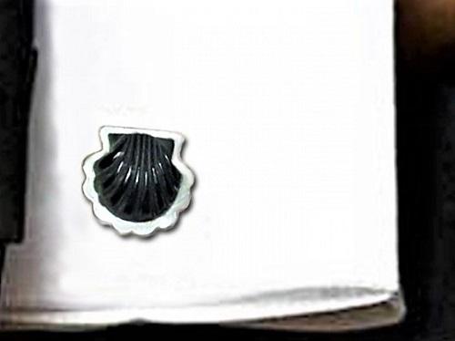 Scallop shell cufflink
