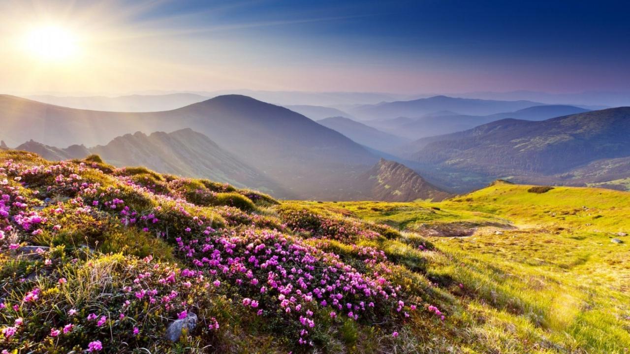 اروع الصور للطبيعة اضغط هنا لتري اجمل صور الطبيعه الخلابه صباح الورد