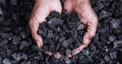 US Coal Consumption Drops To Lowest Level Since 1979