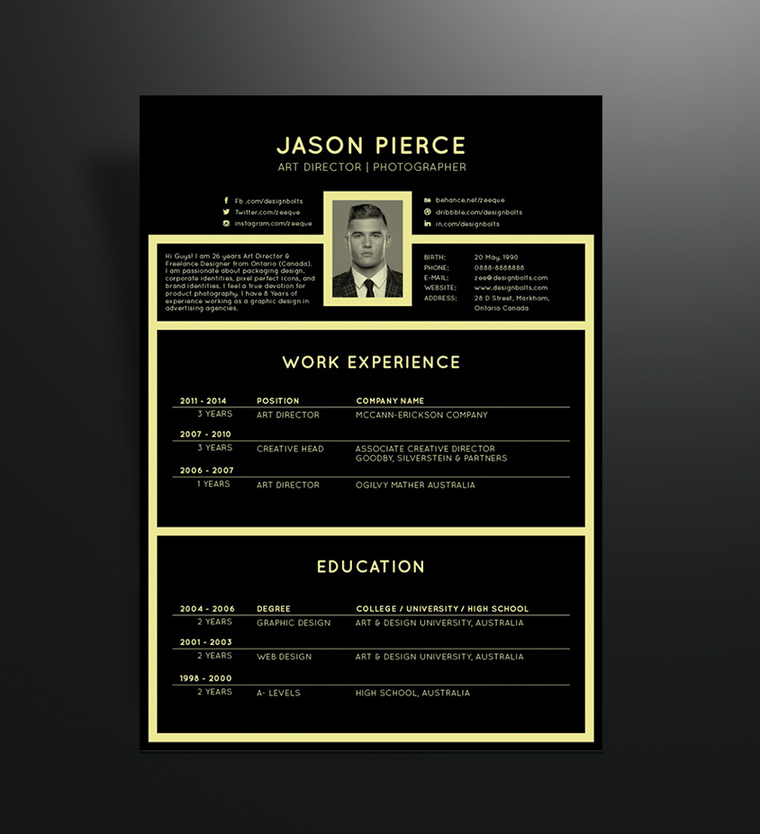 resume template work experience