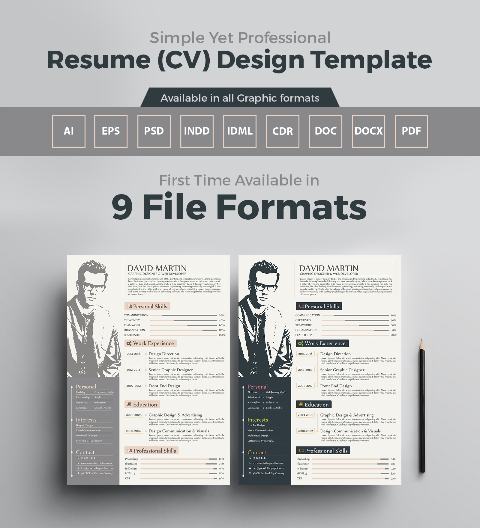 Simple Yet Professional Resume CV Design Templates In Ai