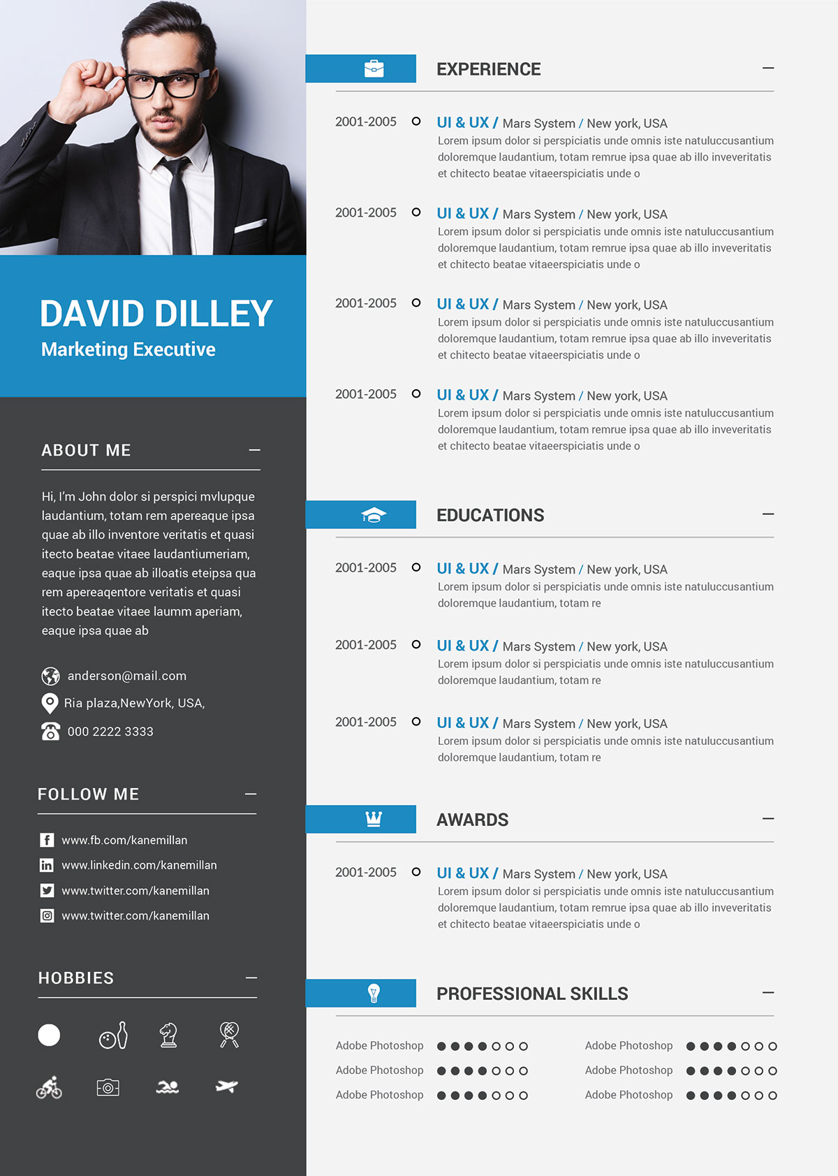 Free Professional CV Template  Cover Letter for Marketing Executives  Good Resume