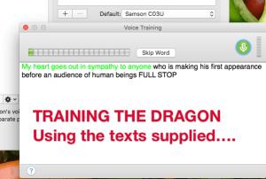Training your DragonDictate