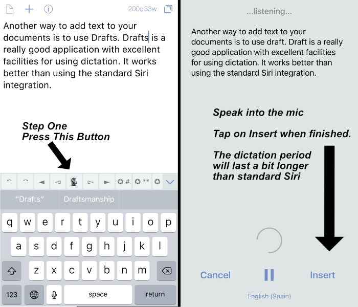 iOS Dictation - Transcription Options
