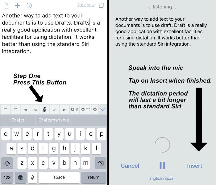 iOS Dictation - Transcription Options