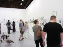Bruno-David-Gallery_6-3-16_07