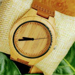 Tree-falcon-watch-bamboo