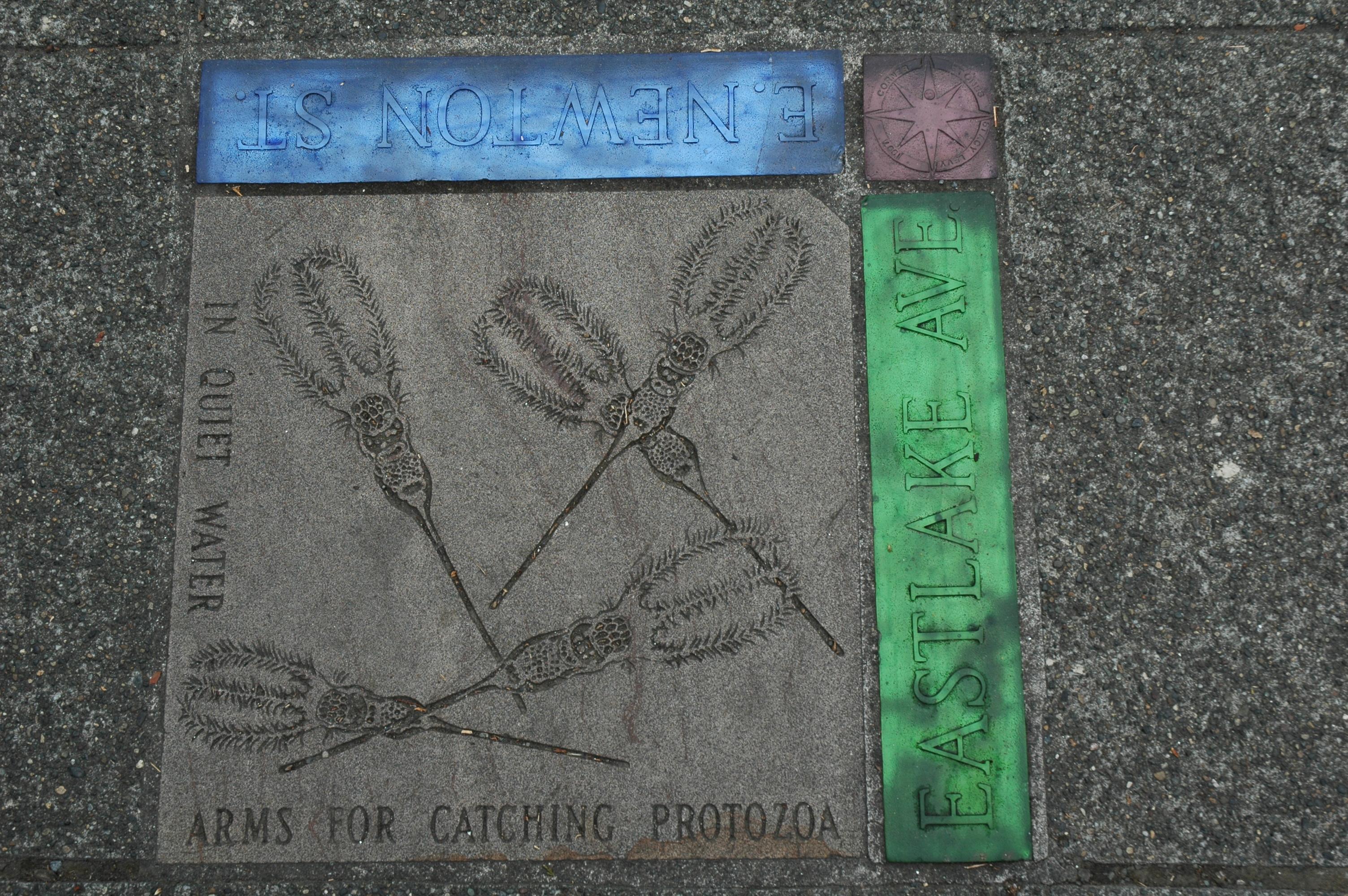 Science on the sidewalk