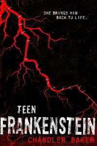 Teen Frankenstein by Chandler Baker is a book that I picked up because I very much enjoy retellings of classic books. Click here for my full review.