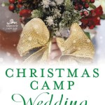Christmas Camp Wedding by Karen Schaler is a bite sized sequel to Christmas Camp featuring all the same characters.
