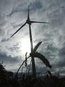 Parc éolien de Sallen