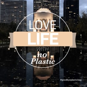 Impressive Life with No Plastic.
