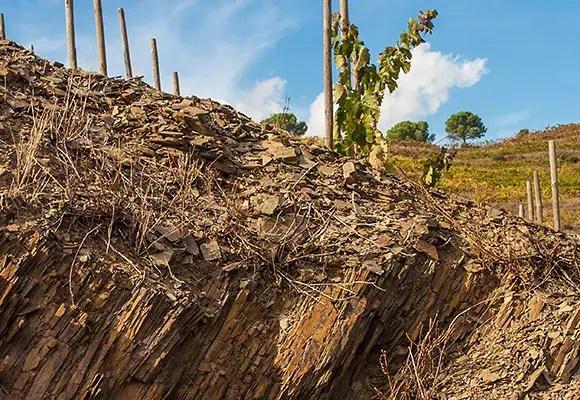 soil Priorat