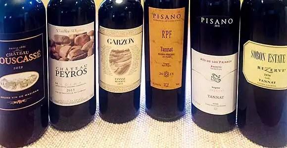 Tannat wines