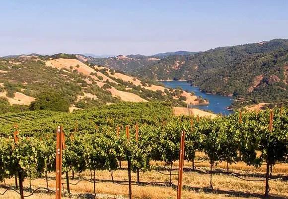 Rockpile Vineyards above Lake Sonoma