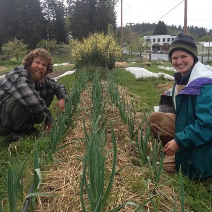 Devin and Stoni weeding garlic