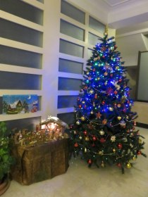 Tree and nativity in the lobby of our building. Traditionally the portiere puts up a tree.