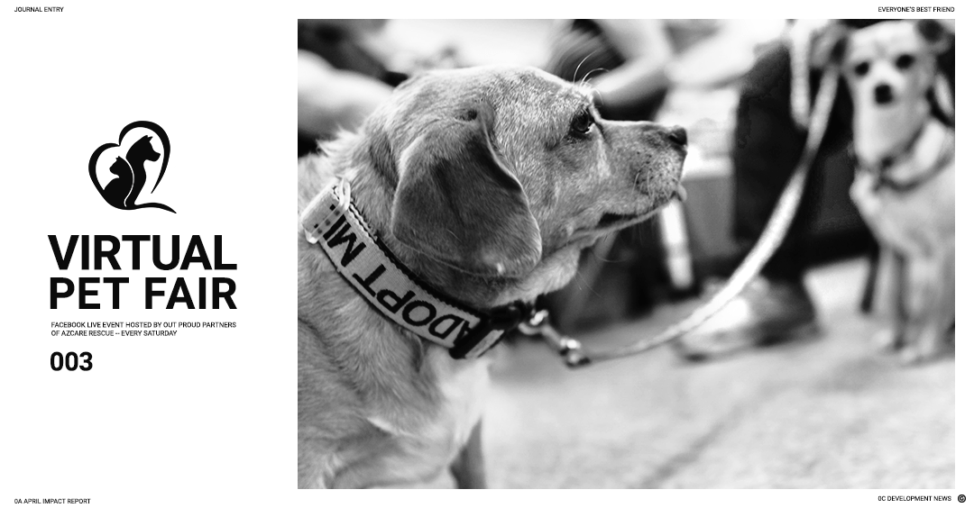 Banner of a dog with the words 'Adopt Me' on the collar
