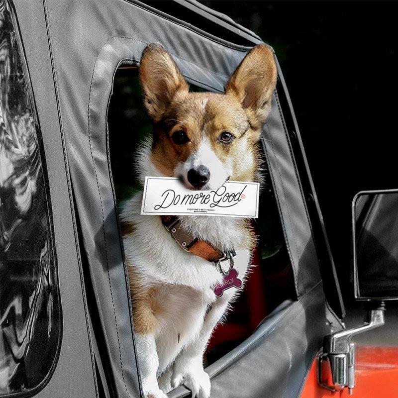 Gooddogs-Clothing-Adventure-Bumper
