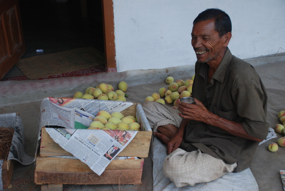 Sitting in his courtyard, he was packing fruits to send off to the Azad market in Delhi