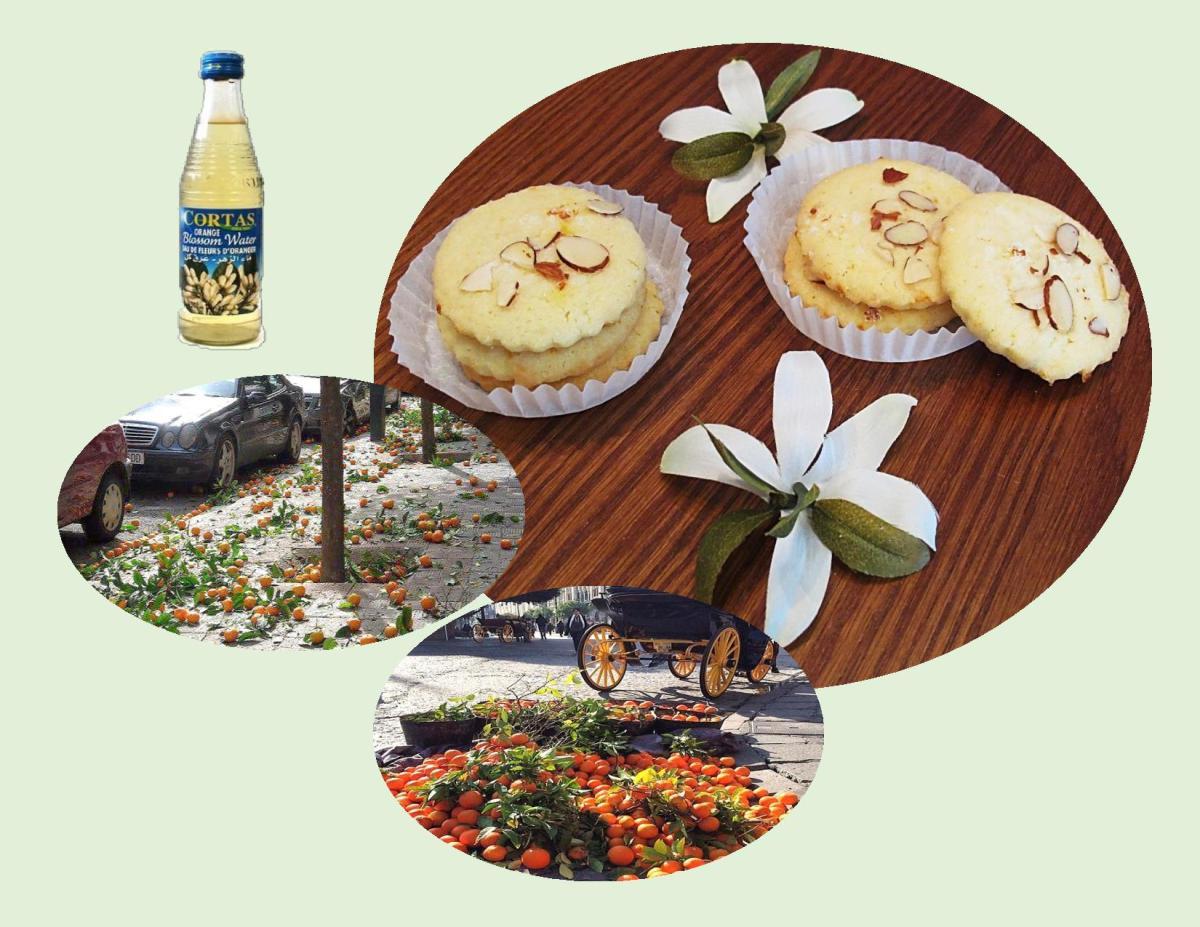 Almond Orange Blossom Cookies