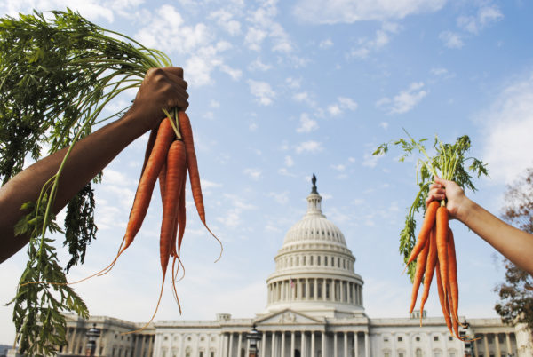 Image result for carrots us capital