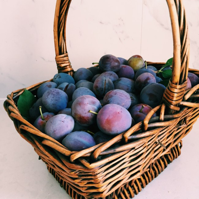 A basket of plums from GoodFoodWeek's garden
