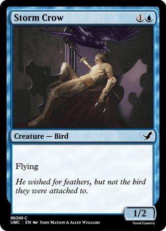 StormCrowMurder