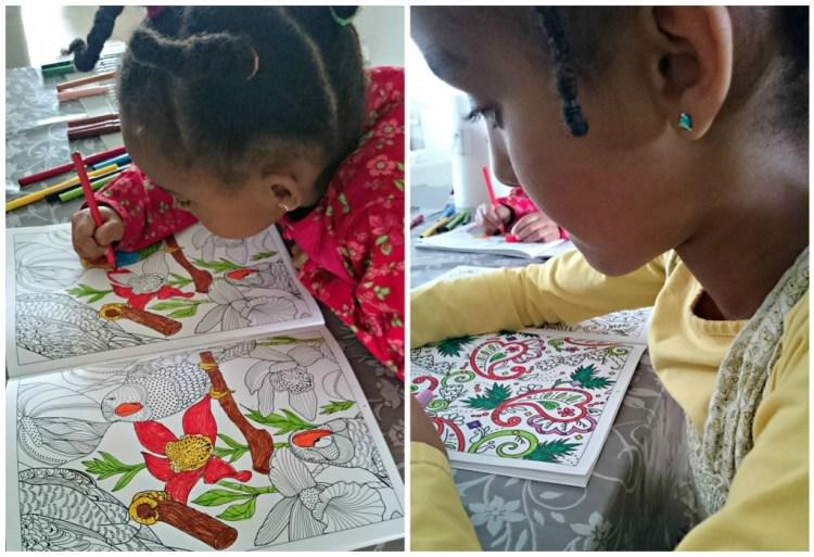 Kleurboek voor volwassenen-budget kleurboek voor volwassenen-goedkope kleurboeken voor volwassenen-kleuren voor kinderen