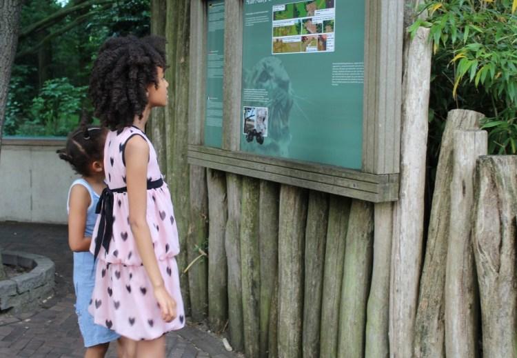 Dagje naar de Burgers Zoo- leuke zomeruitjes-uitstapjes in Nederland-GoodGirlsCompany-Mamachallenge zomereditie 2015