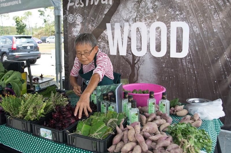 Medini City Celebrates Green Living and Community Building  with First Edible Festival!