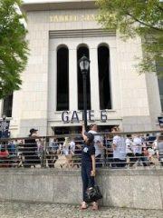 The NY Yankees