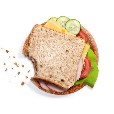biopoltech-sandwich