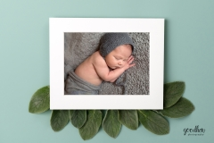 newborn-matted-image-jackson-baby-photographer