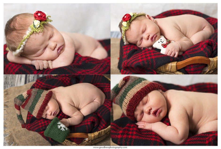 Christmas-themed collage of newborn portraits