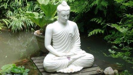 sri lanka poya day (40)