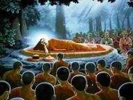 sri lanka poya day (44)