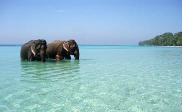 Tangalle Sri Lanka (12)