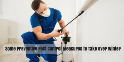 pest control northern beaches