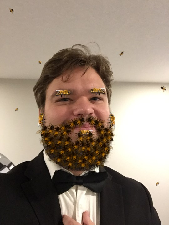 bee beard use